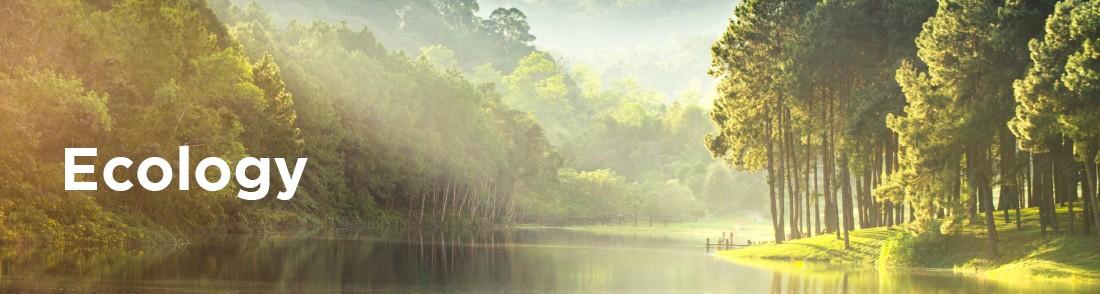 ecology_visual